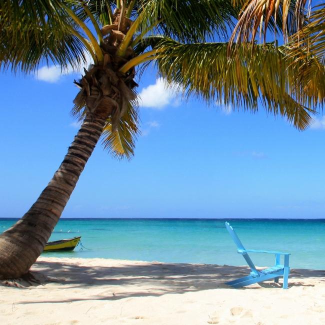 BAYAHIBE   SALIDAS EN 2021